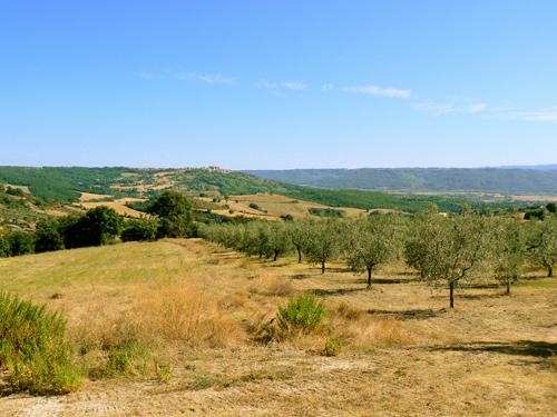 immagine Poggio Gramignano Country Villa